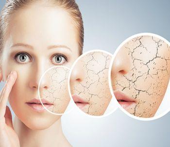 Células madres, la revolución de la medicina estética