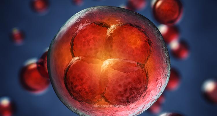Células madre: potencial regenerador periodontal