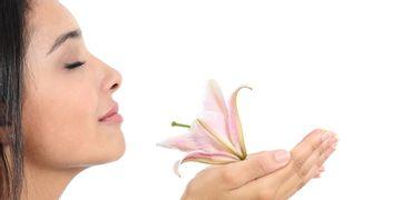 Rinoseptoplastia: la combinación perfecta para tu nariz