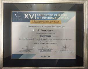 XVI Congreso Chileno